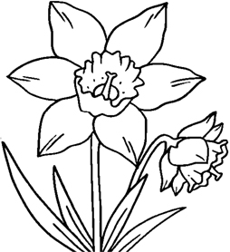 click on a picture below to open a printable version to colour in